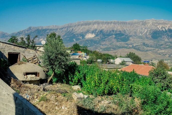 Lazarat Albania