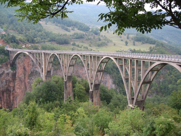 Kanion rzeki Tara w Czarnogórze